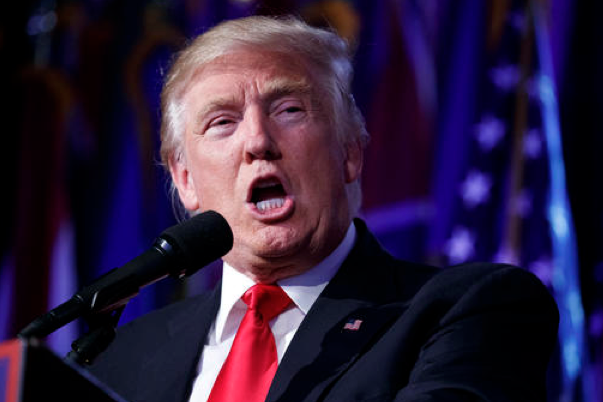 Analyst: Doubtful Trump will interfere with renewable energy boom