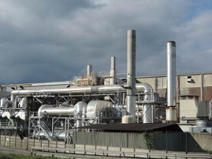 FERC give NRG's troubled cogeneration power plant a break