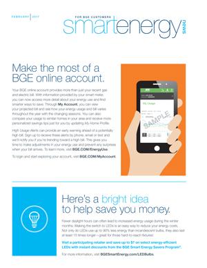 Smart Energy Services print insert. Courtesy Exelon
