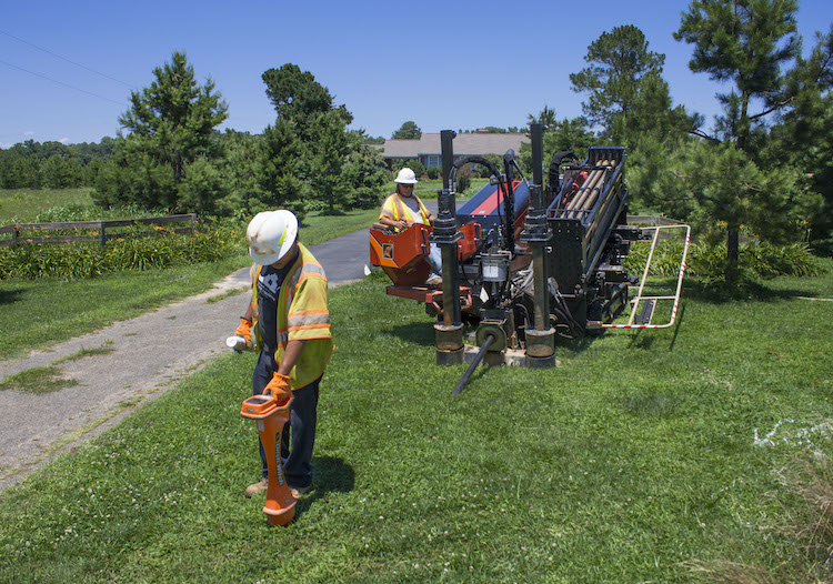 worker and green grass